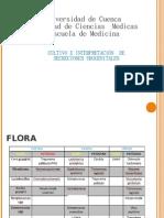Practica de Secreciones Urogenitales FF