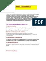 ApuntesPatologiaPiel