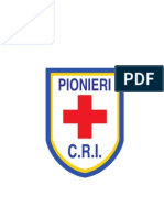 Scudetto Pionieri