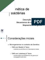 genetica_de_bacterias