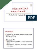 07-Técnicas_de_DNA_recombinante