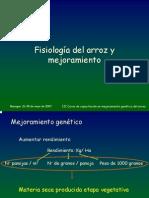 Fisiologia Del Arroz