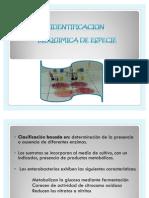 PRUEBAS_BIOQUIMICAS 2 parte
