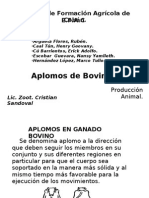Aplomos de Bovinos.