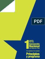Principios Programa de Alianza Pais