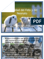 Inmunidad Del Feto y Del Neonato PA INVIAR POR INTER (1)