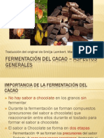 19 Fermentacion Del Cacao[1]