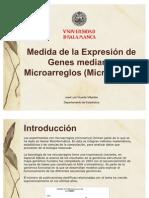 Micro Arrays