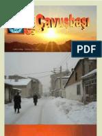 Sivas - Çavuşbaşı  Dergisi  Temmuz 2011  Sayi.1
