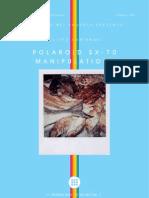 Polaroid_sx70manip