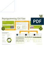 Revolutionize Reprogramming of Cell Fate & Function