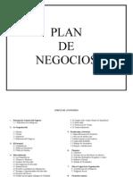Indice Plan de Negocios
