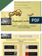 cadenas_troficas