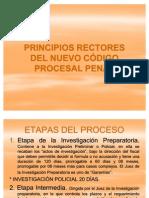 Expo Sic Ion Principios Del Ncpp