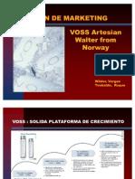 Proyecto de Plan de Marketing VOSS