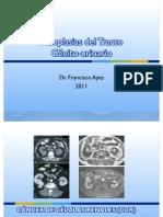 Neoplasias-Del-Tracto-Génito-Urinario Revisado