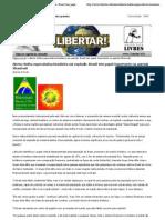 Bolha especulativa brasileira