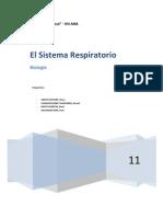 Sistema respiratorio - maristas huacho 2011