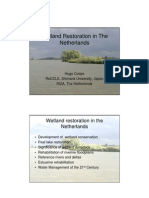 Wetland Restoration in The Netherlands