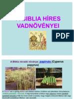 A Biblia hires vadnövényei[1]