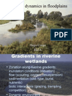 Vegetation dynamics in floodplains