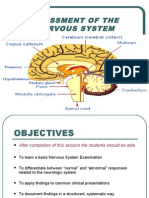 Assessment of the Nervous System_final (1) (1)