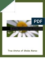 True Status of Shabe Meraj