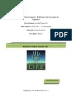 Reflexão Critica. Second life-06.05