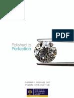 IMT Placement Brochure 2011