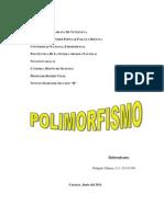 POLIMORFISMO_TRABAJO