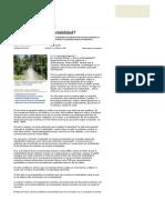 Sostenibilidad_o_sustentabilidad