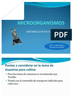 3 Clese Microorganismos Ppt.