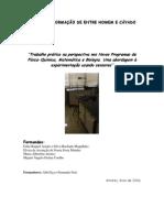 Determinacao Coeficiente Viscosidade Liquido