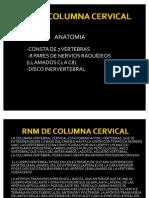 Rnm de Columna Cervical