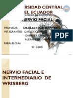 Nervio Facial e Inter Media Rio