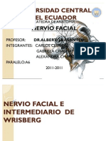 Nervio Facial e Inter Media Rio