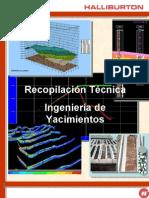 Manual de Yacimiento Halliburton 175pg