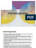Game to Genesis 1