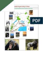 Uganda Gorilla Trekking Primate Safari 8 Days