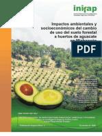 Impactos ambientales y socioeconómicos del cambio de uso del suelo forestal a huertos de aguacate