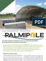 Palmipole