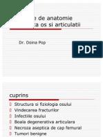 Elemente de Anatomie a Os Si Articulatii