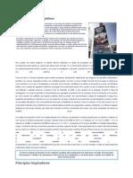 Como Funcion La Reforma Procesal Penal