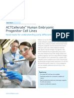 ACTCellerate Human Embryonic Progenitor Cell Lines