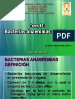 TEMA 11 Bacterias Anaerobias