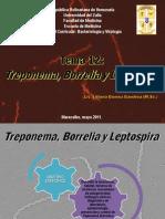 TEMA 12 Treponema Borrelia y Leptospira