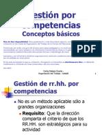 12-competencias-conceptos_basicos