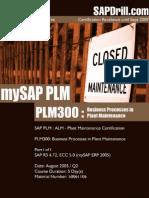 PLM300 Business Processes in Plant Maintenance