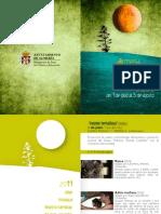 Programa a Cielo Abierto 2011