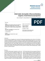 Beilstein J Org Chem-06-65